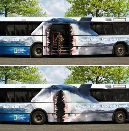 Shark_bus